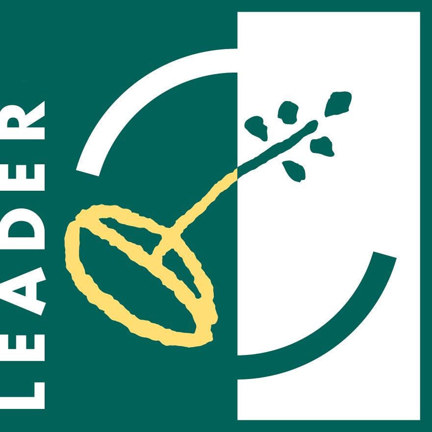 LogoLEADER Positivo